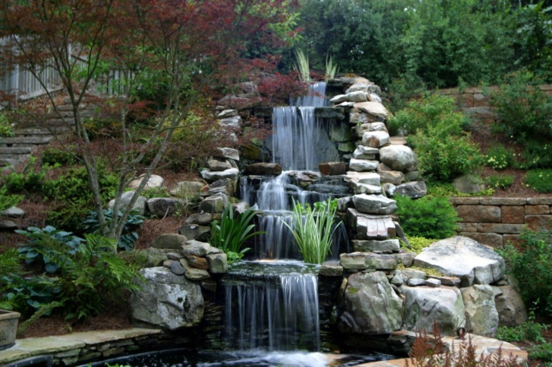 Maintaining a healthy lawn in natural ways your house helper for Koi pond pictures