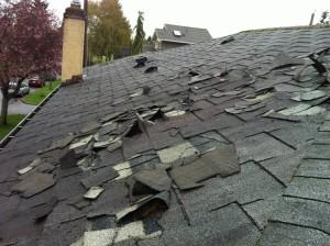 roof damaged 1
