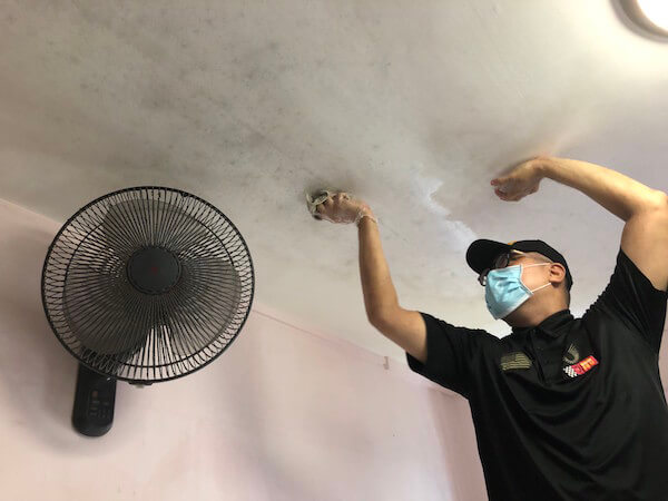 mold removal Singapore
