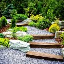 When should I enrich my yard?