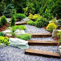 When should I enrich my yard?