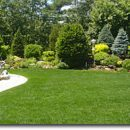Maintaining a Healthy Lawn in Natural Ways